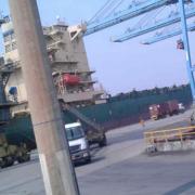 Export Trade & Training