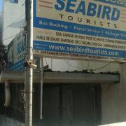 Seabird Tourists