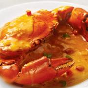 Speciality Restaurants Ltd
