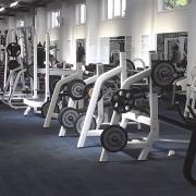 Muscleheds Clubs
