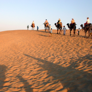 Hari  Om Travel