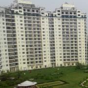 DK Real Estate