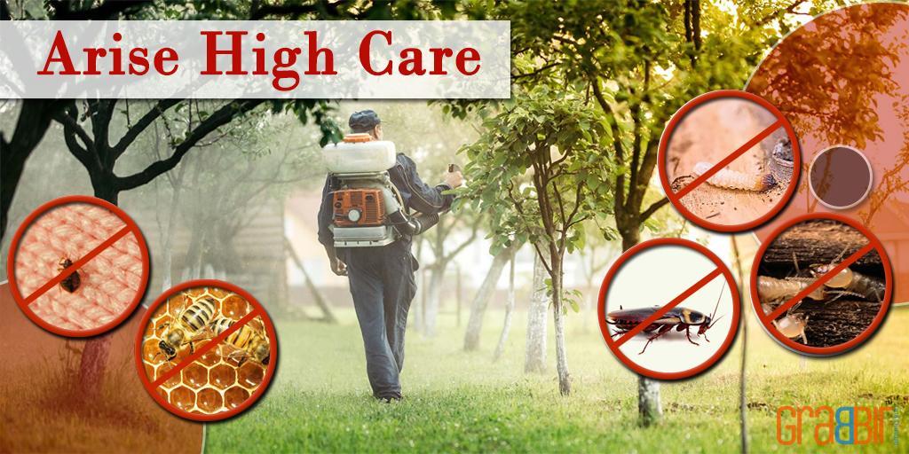 Arise High Care