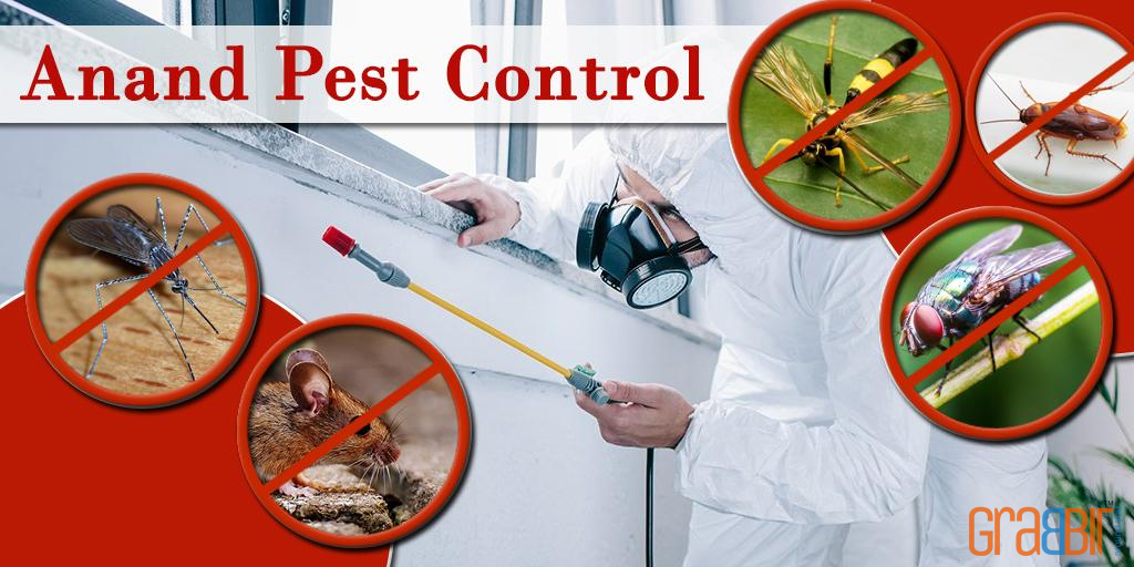 Anand Pest Control