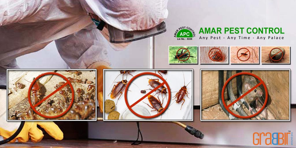 Amar Pest Control