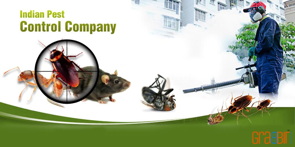Indian Pest Control Company
